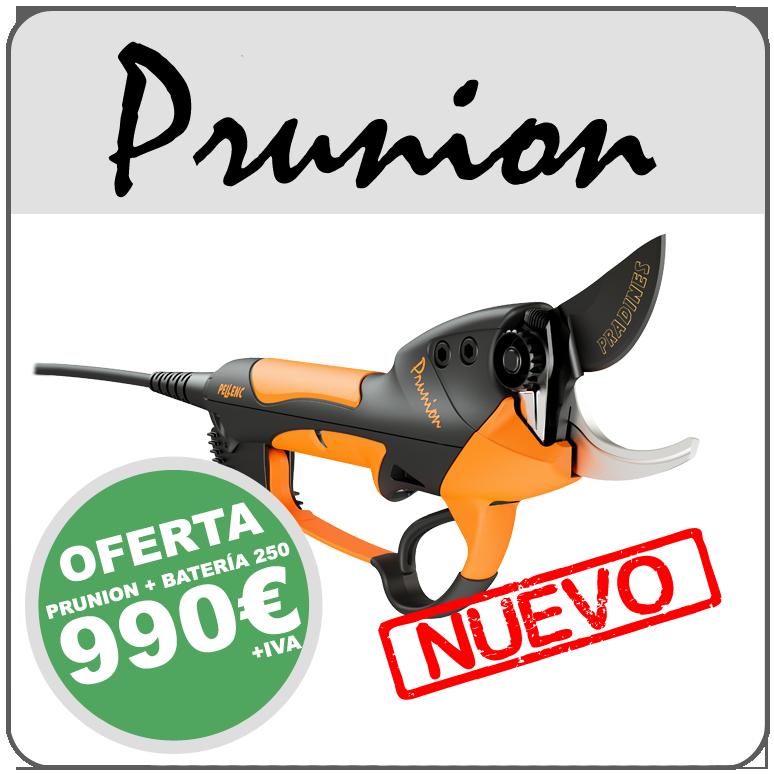 prunion-cabecera
