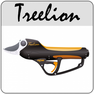 treelion