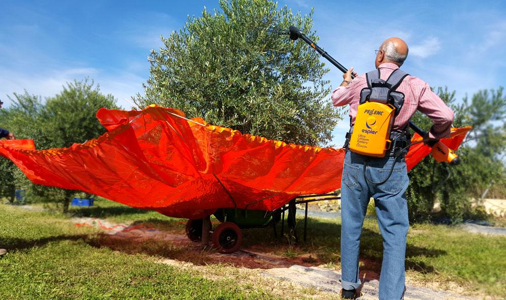 carretilla con paraguas para recoger olivas y almendras